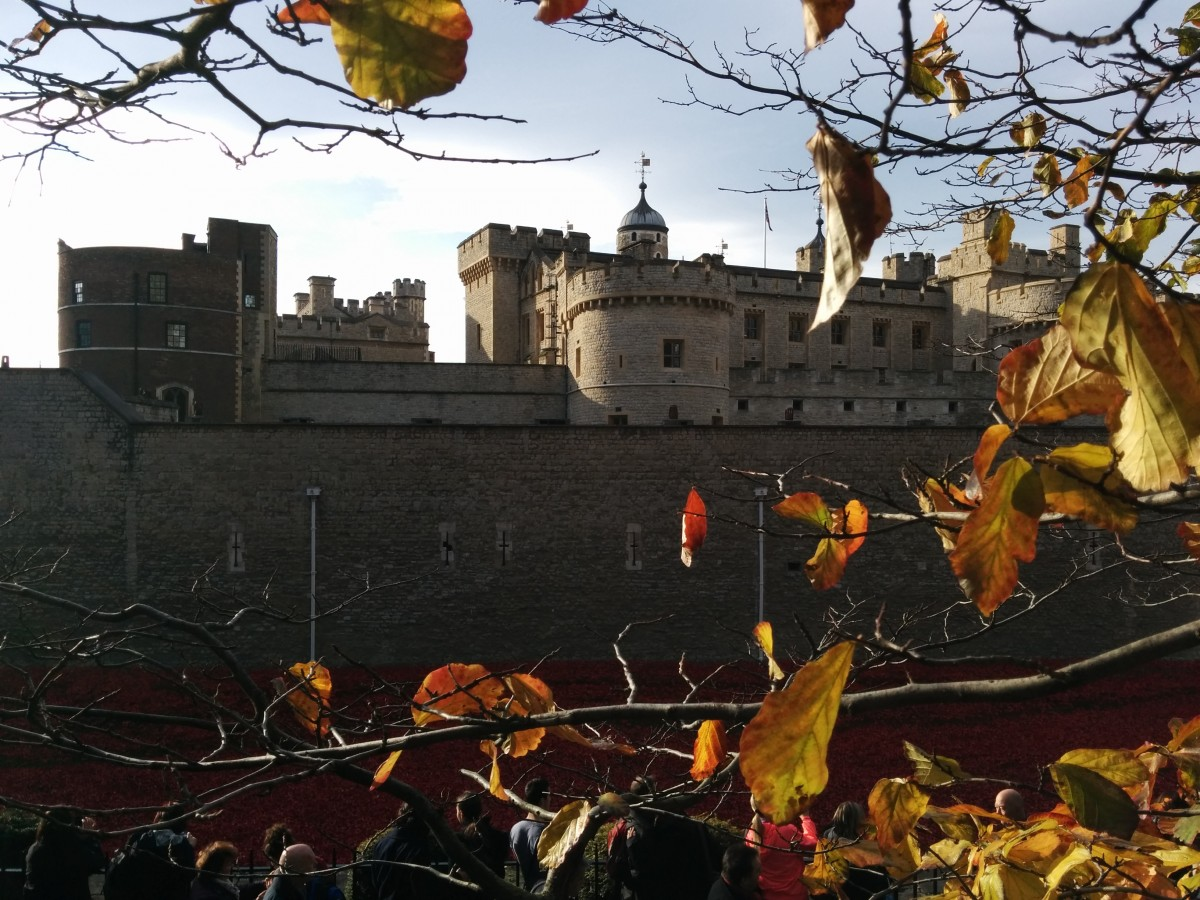 tower of london this october