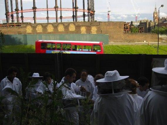 Camley Street urban beekeeping green london walking tour