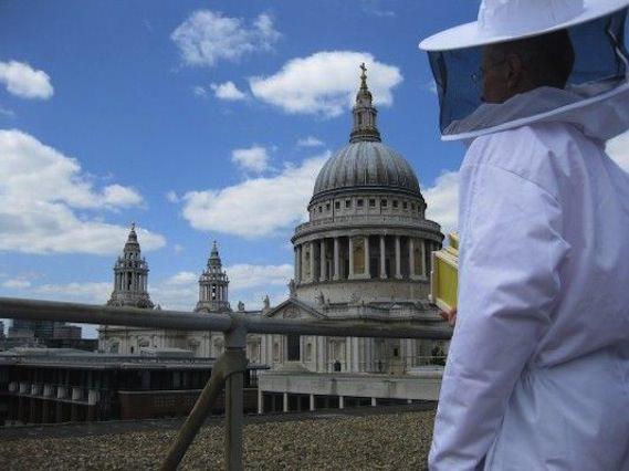 urban bee green london